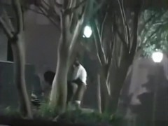 Voyeur tapes a black ghetto couple having sex in the park