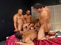 Three guys banging a busty black beauty
