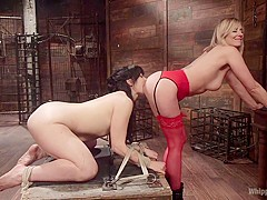 The Whore Next Door: Siouxsie Q Submits to Maitresse Madeline Marlowe