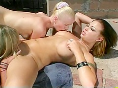 Sindee Coxx Pleasured By Two Busty Babes