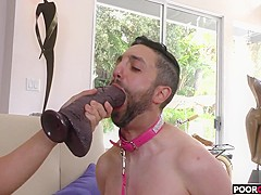A BBC For HotWife Abella Danger While Cuckold Watching
