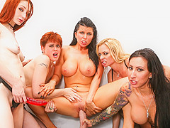 Briana Banks & Lily Cade & Violet Monroe & Lily Lane & Romi Rain in Destruction Of Romi Rain, Scene