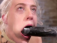 Cadence Lux & The Pope in Blonde Rope Slut Is Victimized And Made To Squirt Uncontrollably - HogTied