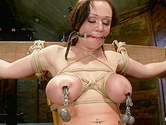 Big Titted 21yr Old In Her First Ever Hardcore Bondage Shoot Once Helpless We Abuse Those Tits. - Ho