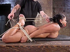 Maxine X in Big Tits Bound, Tormented Body, And Pussy And Face Fucked - HogTied