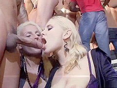 Hottest pornstars Federica Hill, Alexa Bold and Carla Cox in horny interracial, black and ebony xxx
