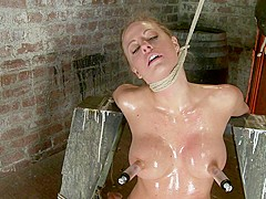 Elbows Bound, Knees On Hard Wood, Nipple Suction, Neck Rope, Breath Play, Face Fucking, Made To Cum