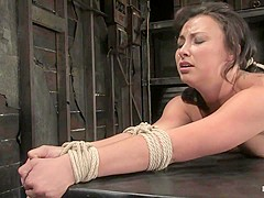 Bianca Dagger in Bianca Dagger Suffers And Cums Though Her First Hardcore Bondage Experience. - HogT