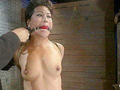 Asian Milf With Huge Nipples Is Made To Cum Hardpulled To Her Tip Toes With A Brutal Crotch Rope - H