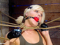 Little Blond Aussie Chick Walked Into The Wrong Sub Basementwelcome To America. - HogTied