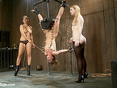 Isis Love & Madison Young & Ariel X in Ariel X is trapped in an inverted Sybian and cummingNo hope f