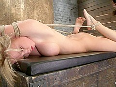 Madison Scott in Category 5modified HogTied Suspension  - HogTied
