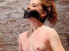 AnnaBelle Lee in Annabelle Lee - Red Headed Slut - Live Show Part 1 - HogTied