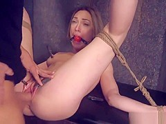 Hairy Bdsm Babe Gets Anally Banged By Dom
