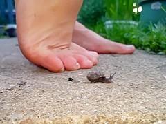 Barefoot snail crush