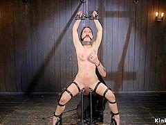 Brunette in device bondage pussy toyed