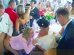 Orgy porn wedding Wedding: 4,521